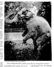 Keeper Kerry Seitz rides Bunny the elephant Oct. 14, 1979.
