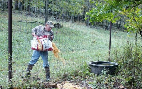 Randall Hoff dumps bait along the fence of Brush Ranch Outfitters, a shooting preserve in Trempealeau County. Hoff and Travis Brush, owner of the captive deer facility, were charged with illegally luring wild deer into the farm, among other violations.