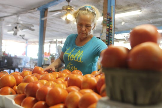 """Marianna resident Michelle King, 49, sorts tomatoes at Buddy's Produce in Sneads. """"It affected a lot of people's lives. It's been hard to overcome,"""" she said about Hurricane Michael."""