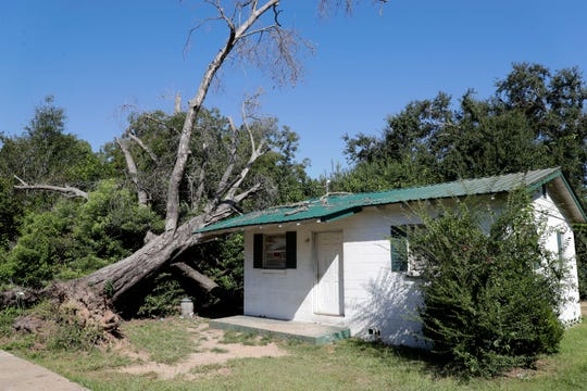 A home in Quincy, Florida, was spared by a large oak tree that was uprooted by Hurricane Michael in Oct. 2018. Over 11 months later, the tree still rests to the left of the home.