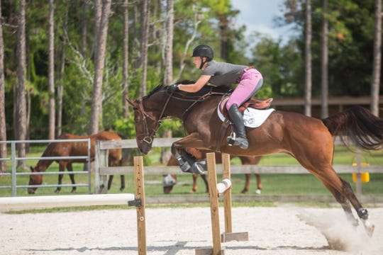 Bree Wipperman on Hunter, her adopted thoroughbred from Equine Rescue & Adoption Foundation, practice a jump. The 2019 Country Festival on Oct. 20 will feature riding demonstrations.