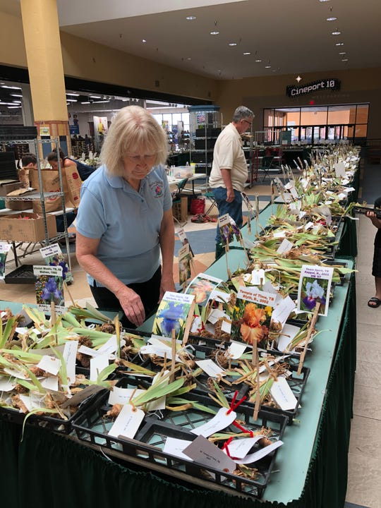 El Pasoans have a chance to buy irises from the Mesilla Valley Iris Society Saturday at Sunland Park Mall.