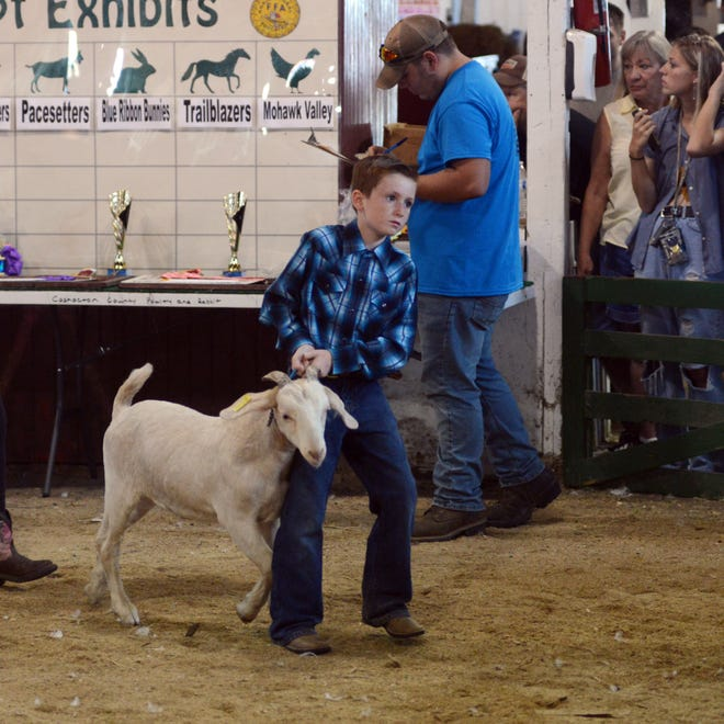 Goat judging for the coming Coshocton County Junior Fair will be on Oct. 3 at the Junior Fair Arena. Due to state guidelines, there will be no showmanship or peewee classes.
