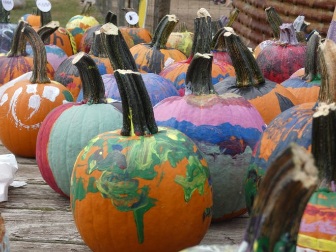 Pumpkins that kids have painted dry in the sun Saturday at Applefest at Lawrence Orchards.