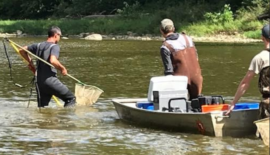 Brian Zimmerman conducts an electrofishing demonstration.