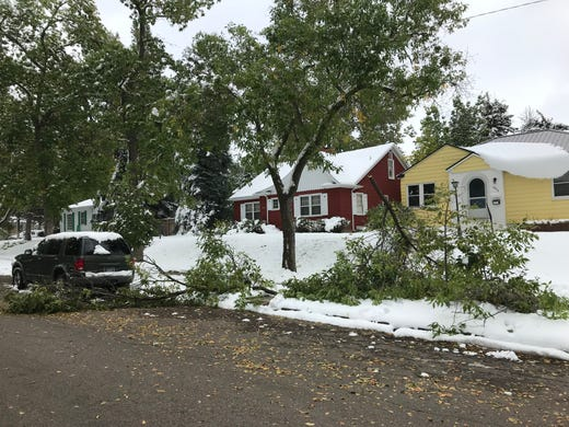 Trees litter the boulevard along 4th Avenue North in Great Falls Sunday following a major fall storm over the weekend.