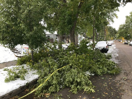 Yellow tape was placed around an area where heavy snow damaged a street light and trees in the 2300 block of 4th Avenue. N.