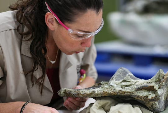 Jessica Taylor cleans and prepares dinosaur remains at the newly expanded paleo lab in the Children's Museum of Indianapolis.