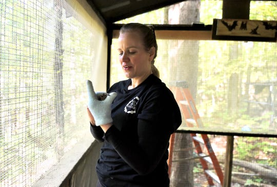 Victoria Campbell, of Wild Things Sanctuary, holds a bat in the outdoor flying house, which houses many of the healthier bats before they are released back into the wild.