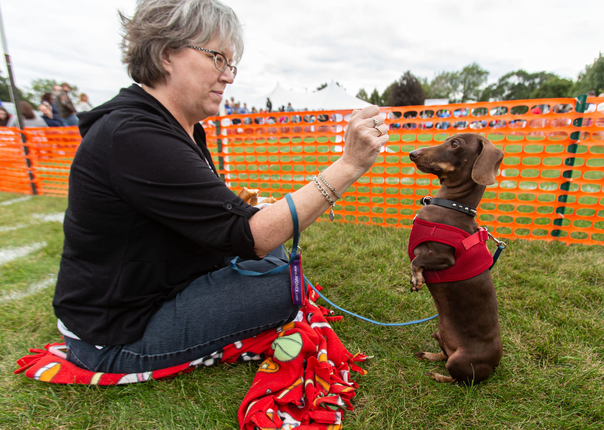 "Trisha Fischer of Slinger treats her Dachshund ""Spud"" to a bite of her pretzel during the 25th annual Germantown Hunsrucker Oktoberfest at Dheinsville Historic Park on Saturday, Sept. 28, 2019."