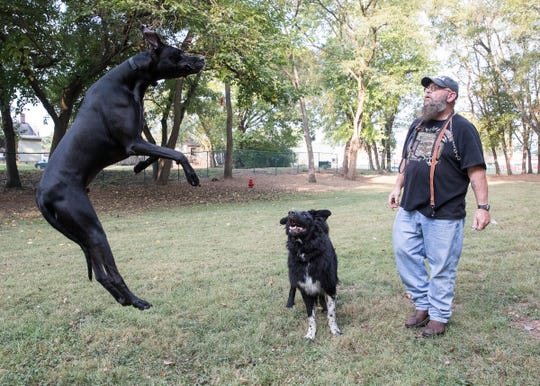 Scooby, a Great Dane, jumps in the air as Max watches when his owner Keith Zonner throws a piece of jerky in the air for him to catch at the new Chillicothe Dog Park on Tuesday, October 1, 2019. Zonner works the third shift and enjoys taking his dogs to the park after getting off work.