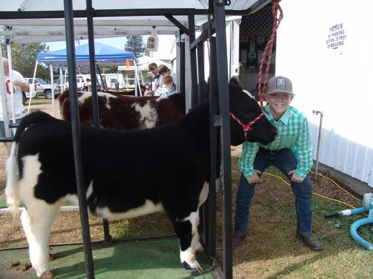 "Blaze Minet has a little fun before showing his Shorthorn heifer in the beef breeding competition. ""I like showing my skills, and I enjoy the competition,"" said the 12-year-old member of the Country Kids 4-H Club."