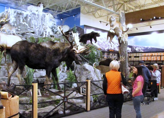 A display of mounted game animals greeted visitors at the Big Flats Field & Stream grand opening in 2014.