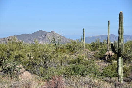 Black Mountain seen from the Rock Tank Trail in McDowell Sonoran Preserve