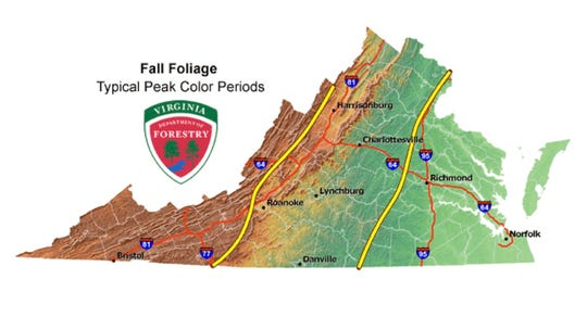 This map from the Virginia Department of Forestry shows typical peak fall color periods and is not a prediction for particular year. The left portion peaks Oct. 10-20, the middle Oct. 15-25 and the right Oct. 20-31.