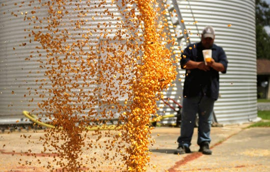 """""""There isn't much forgiveness in grain movement and a farmer may only get to make a single mistake,"""" says Bill Field."""