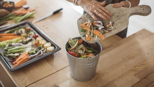 Plastic-free lifestyle: compost Bin
