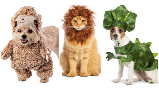 We know that 29 million of you plan on buying a Halloween costume for your pet. Maybe more than one costume because the cuteness is hard to resist.