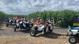 The family farm will kickoff the fall season on Saturday, Sept. 28 and will continue through Sunday, Nov. 3 in Robstown.