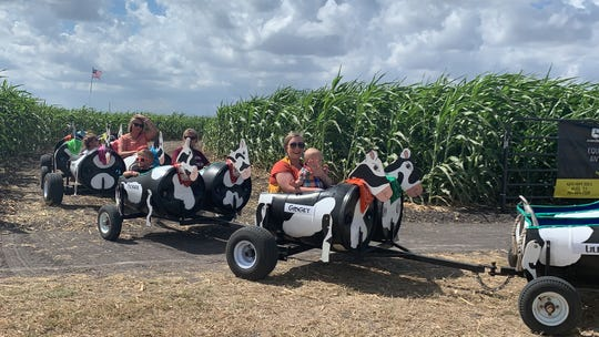 Families enjoy the cow train at Rockin' K Farms in Robstown on Saturday, Sept. 28, 2019.