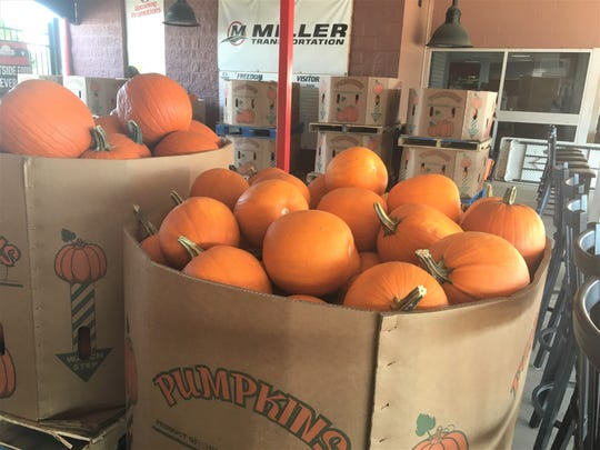 Boxes of pumpkins are ready for a fall festival to be held at UC Health Stadium every Saturday in October.