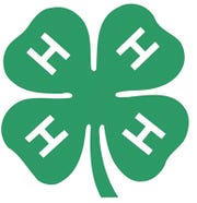 4-H logo, courtesy of National 4-H Association