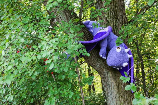 As the centerpiece of the yarn bombing at the Cofrin Memorial Arboretum at the University of Wisconsin-Green Bay, Amethystus the Dragon is impossible to miss.