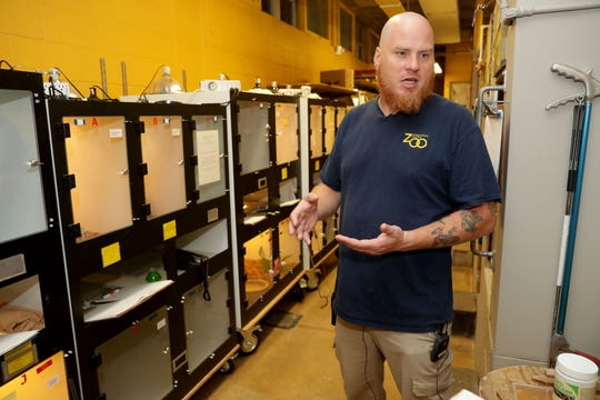 Shawn Miller, aquatic and reptile curator, discusses the rhinoceros viper snakes at the Milwaukee County Zoo.