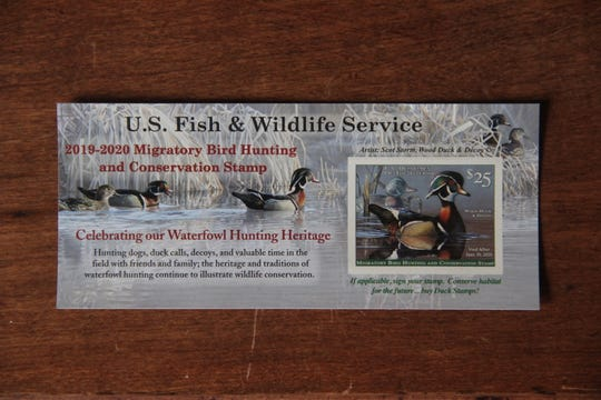 The current version of the Migratory Bird Hunting and Conservation Stamp, commonly called the duck stamp, features a drake wood duck. The image is taken from a painting by wildlife artist Scot Storm of Minnesota, who won the annual design contest last year. All duck hunters age 16 and older must carry a valid duck stamp when waterfowl hunting in the U.S.
