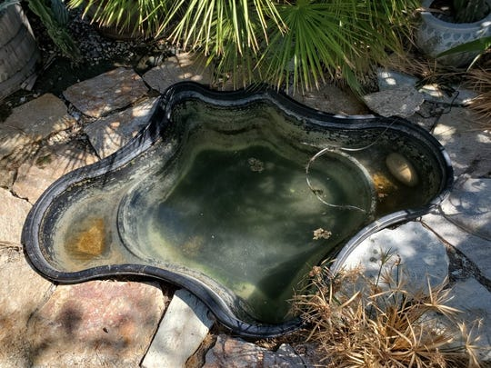 A small man-made pond in Rabbi Denebeim's in-law's backyard served as a body of water where observant Jews symbolically cast their sins this year, Sept. 30, due to a lack of adequate locations to perform the custom.