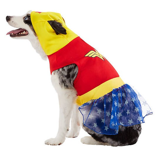 They are everyday superheros to us! This Wonder Woman costume sells for $21.99 at PetSmart.