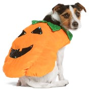 This new costume on an classic idea is $21.99 at PetSmart.