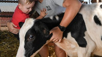 Townville dairy farmer says why the family stopped making milk after 46 years