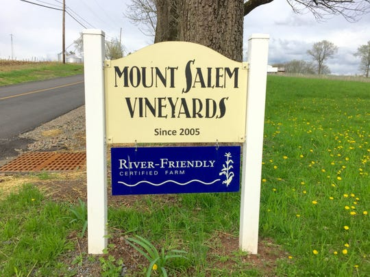 Mount Salem Vineyards in Alexandria Township near Pittstown may be the first winery in the state to grow grüner veltliner grapes from Austria.