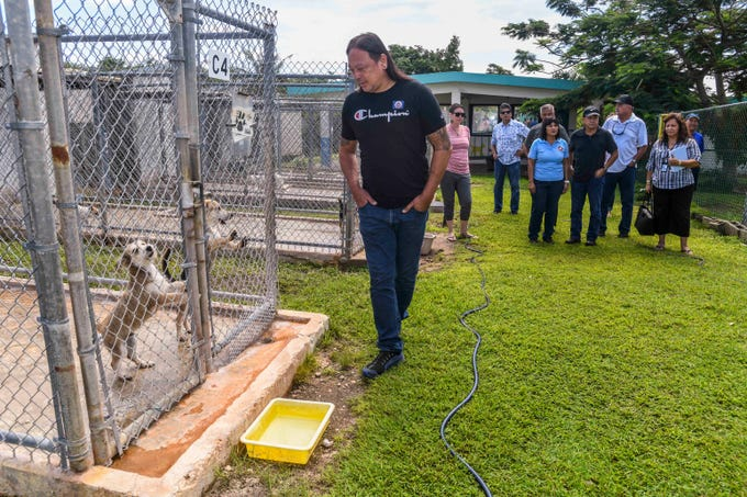 Barrigada Vice Mayor Jessie Bautista, front, checks in on a pair of canines on Puppy Row as he and other mayors and vice mayors tour the Guam Animals In Need non-profit animal shelter in Yigo on Thursday, Oct. 3, 2019.