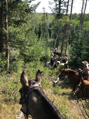 Shay Pendray makes her way down into an aspen grove aboard Einstein during a Wyoming cattle drive in September 2019.