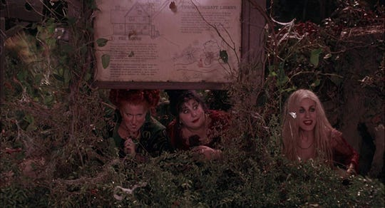 "Kathy Najimy will host a screening of ""Hocus Pocus"" Oct. 12 at the Pullo Center."