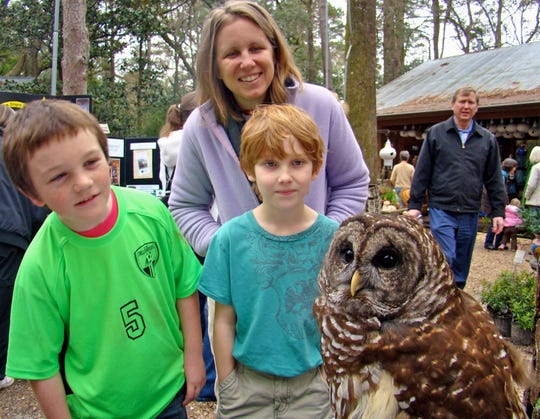 Families learned about the amazing adaptations that enable owls to be successful nocturnal hunters at St. Francis Wildlife's program with this disabled barred owl at Native Nurseries.