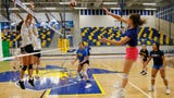 Eastwood volleyball coach Aaron Bajek and his daughter share a strong relationship