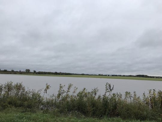 This fall planted oats field resembles a small lake following the band of heavy showers that moved across Wisconsin on Oct. 1, 2019.