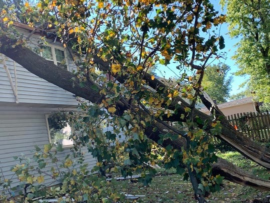 The V-shaped tree that crashed through the Gallo family's Cherry Hill home nearly missed the children inside.