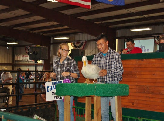 Javin Robinson holds his Grand Champion market duck during the Sale of Champions auction Thursday in Hunter Arena. Home Loan Savings Bank and PSI Industrial Solutions purchased Javin's duck. The 16-year-old member of Magic Makers 4-H Club also had the Grand Champion duck last year.