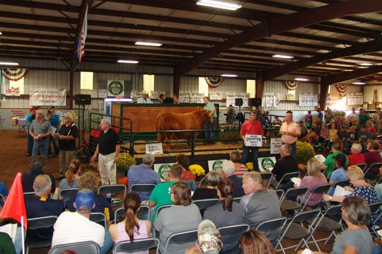 The Sale of Champions was held Thursday in Hunter Arena. Rod Lindsey, a member of the fair board and auction committee, credited the generosity of community members and businesses with helping the young exhibitors reach their goals.