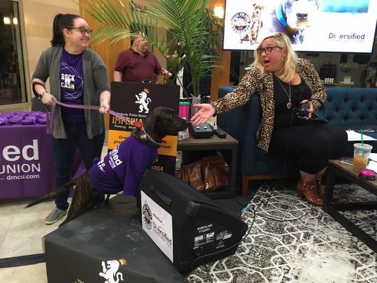 Sam Keene, left, of Detroit brought Josie to the Detroit Dog Rescue radiothon — to the delight of WDVD-FM morning host Lauren Crocker.