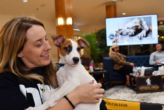 Kristina Rinaldi, 36, Executive Director of Detroit Dog Rescue plays with Chemung a beagle/terrier mix who is waiting for a new home during the raidothon.