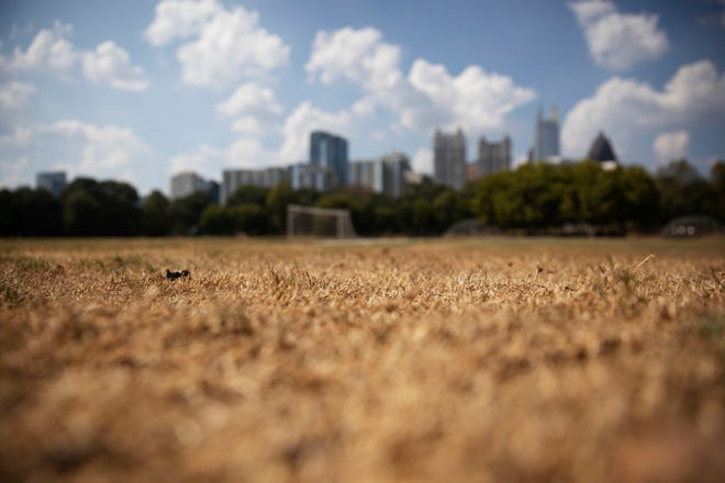 Dry grass from a lack of rain lays beneath the Midtown skyline in Atlanta, Thursday, Oct. 3, 2019. Scientists say more than 45 million people across 14 Southern states are now in the midst of a drought that's cracking farm soil, drying up ponds and raising the risk of wildfires. (AP Photo/David Goldman)