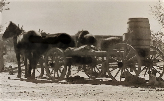 A typical Navajo wagon is loaded and prepared for the trip home after its owners finished their visit to the Fruitland Trading Company in this photo circa 1930s.