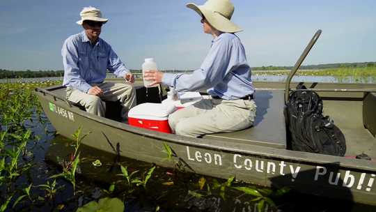Leon County staff collecting water quality measurements.
