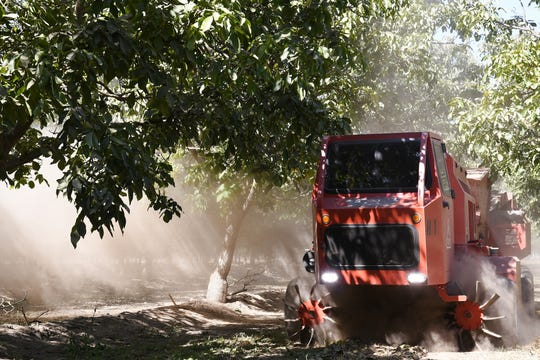 A walnut harvest scoops up thousands of walnuts from the ground at Sam Sciacca's orchard along Lovers Lane, just outside Visalia, on Oct. 1, 2019.