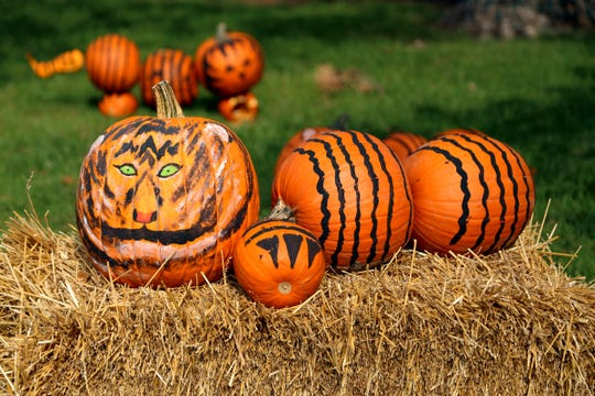 These tigers made from pumpkins were an attraction at the 2016 edition of Zoo Boo.